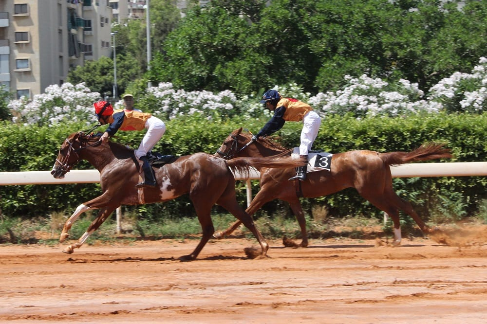 A horse race at the Beirut Hippodrome