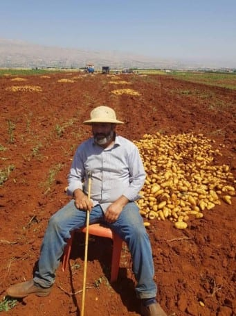 Lebanon potato farmers are struggling to sell their produce