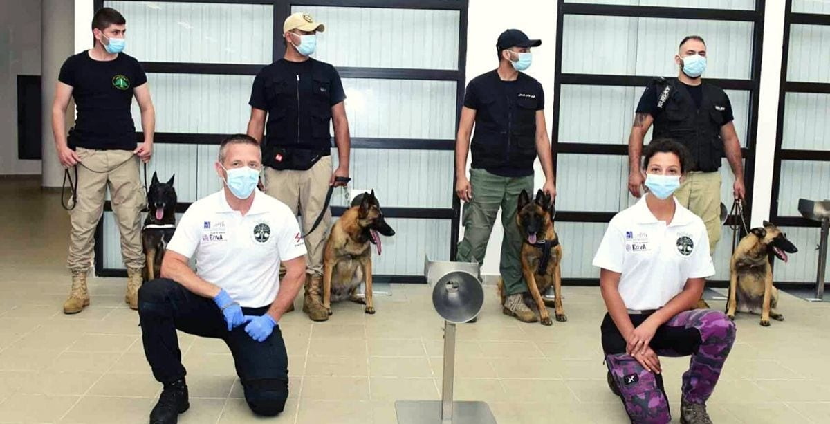 Lebanon Is Now Training Dogs To Detect Coronavirus