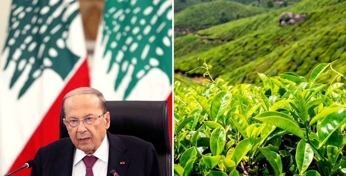 President Aoun Under Fire Over Sri Lankan Tea Donation