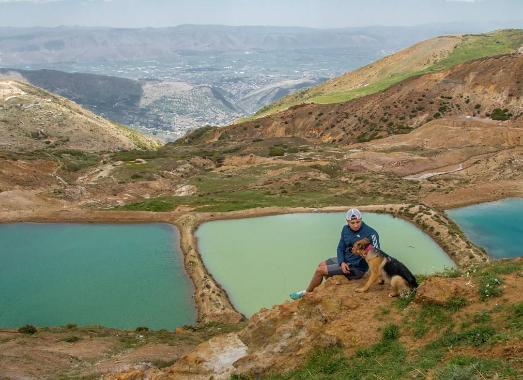 Hiking with a dog in Sannine, Mount Lebanon