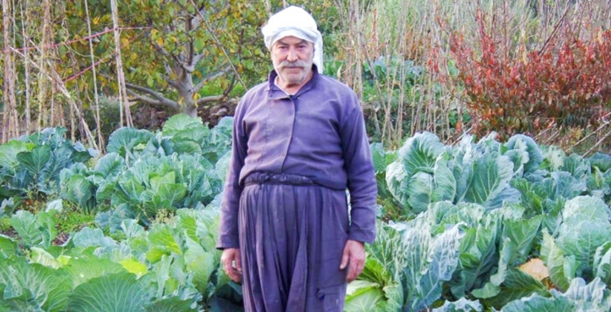 Tonnes Of Produce Meant To Be Exported To Saudi Arabia Are Now Stuck In Lebanon