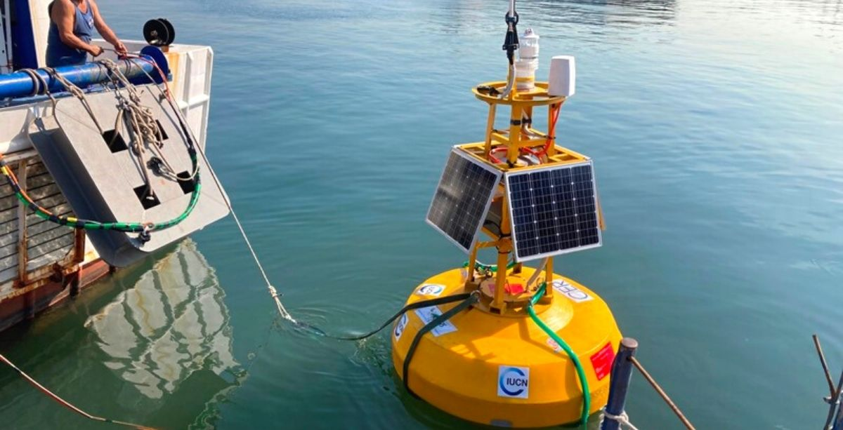 There's Now A Smart Buoy Floating In Beirut Waters
